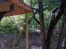 Casa do T na floresta Imagens de Stock Royalty Free