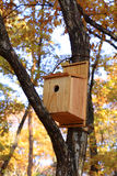 Casa dos pássaros fotografia de stock