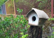 Casa dos pássaros Foto de Stock