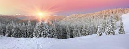 Casa dos pastores no inverno Imagens de Stock Royalty Free