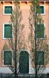 Casa e árvores Imagem de Stock