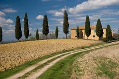 Casa e árvores no campo foto de stock