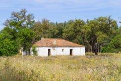 A casa e as árvores da exploração agrícola no vale Seco, Santiago fazem Cacem Imagem de Stock Royalty Free