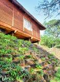 Casa e cama de flor ambiental fotos de stock royalty free