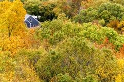 Casa e copas de árvore Fotos de Stock Royalty Free