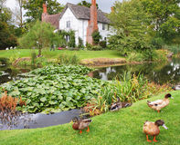 Casa e jardim ingleses medievais do solar imagens de stock royalty free