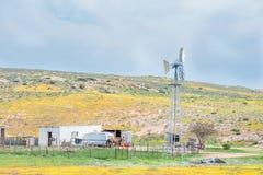 Casa e moinho de vento entre flores em Boemansuitkyk Fotos de Stock