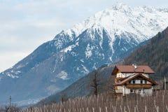 Casa e montanhas no inverno Imagem de Stock