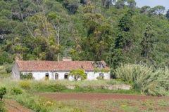 A casa e a plantação abandonadas da exploração agrícola no Santiago fazem Cacem foto de stock royalty free
