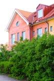 Casa e plantas verdes Imagem de Stock Royalty Free