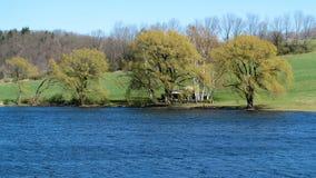 Casa e salgueiros no lago Fotografia de Stock