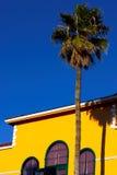 Casa e uma palmeira Fotos de Stock Royalty Free