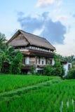 Casa em campos do arroz de Ubud, Bali, Indonésia imagens de stock