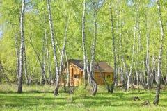 Casa en bosque Fotos de archivo libres de regalías
