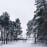 Casa en bosque del invierno Fotografía de archivo