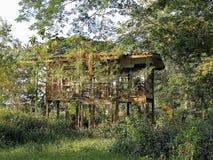 Casa en bosque fotos de archivo