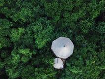 Casa en el árbol en el medio del bosque fotografía de archivo