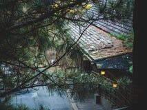 Casa en el bosque con una visión desde los árboles foto de archivo
