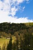 Casa en el bosque en las montañas Foto de archivo libre de regalías