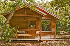 Casa en el jardín del aguacate Imágenes de archivo libres de regalías