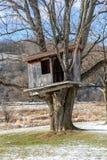 Casa en el árbol del país en la primavera temprana Fotos de archivo libres de regalías