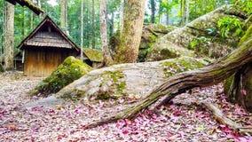 Casa en la madera Fotografía de archivo