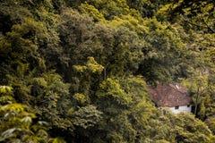 Casa en la selva Fotografía de archivo libre de regalías