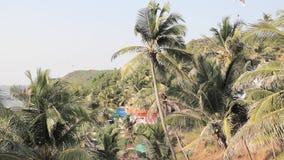 Casa en las palmeras contra el contexto de colinas verdes y de un ala flexible que vuela almacen de video