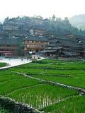 Casa en los campos del arroz Fotografía de archivo libre de regalías