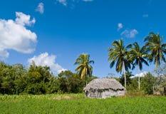 Casa en paisaje tropical Imágenes de archivo libres de regalías