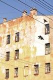 Casa en St Petersburg con la silueta de los pájaros fotografía de archivo