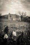 Casa encantada abandonada Foto de archivo