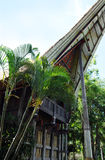 Casa etnica tradizionale della gente originale di Sulawesi, Indonesia Fotografia Stock Libera da Diritti