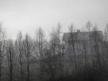 Casa fantasmagórica con los árboles y la niebla imagen de archivo libre de regalías