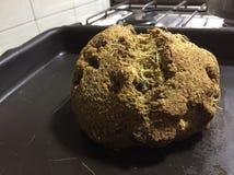 A casa faz o pão do vegetariano Foto de Stock