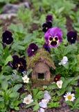 Casa feericamente bonito com as flores da viola do jardim Imagem de Stock