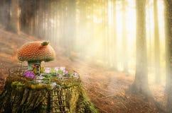 Casa feericamente (cogumelo) Fotografia de Stock Royalty Free