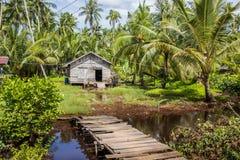 Casa feita da palha e da madeira cercadas pelas palmas no dia ensolarado Imagem de Stock