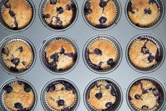 A casa fez muffin de blueberry foto de stock