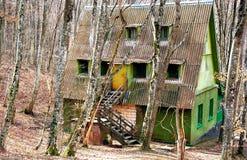 Casa in foresta Immagine Stock