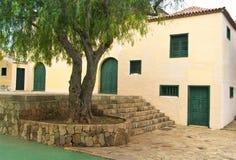 Casa grande con el árbol y las puertas verdes Foto de archivo