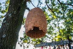 Casa grande de la colmena en un árbol en un bosque Fotos de archivo