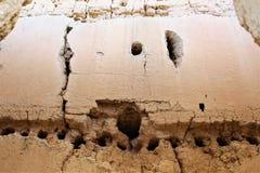 Casa Grande ruïneert Nationaal Monument Arizona Royalty-vrije Stock Afbeelding
