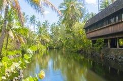 Casa hawaiana en la isla Hawaii Estados Unidos del kawaii de la selva Foto de archivo