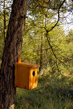 Casa hecha a mano del pájaro que cuelga en un tronco de árbol Foto de archivo libre de regalías