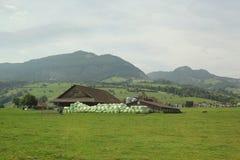 Casa hermosa con el heno seco en el prado de la hierba imagenes de archivo