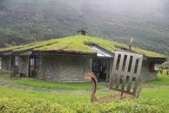 Casa inusual con la hierba en el tejado, Noruega Imagenes de archivo