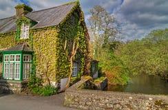 Casa irlandese del cottage Immagini Stock Libere da Diritti