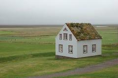Casa islandesa de la granja con el tejado de la hierba Fotografía de archivo libre de regalías