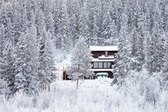 Casa isolata accogliente nella foresta di inverno Immagine Stock